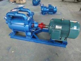 SK水環真空泵