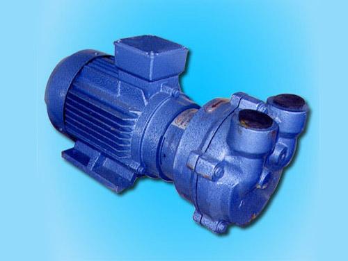 2BV型水环真空泵
