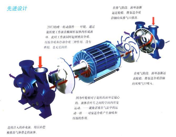 2BEC系列水环真空泵结构图