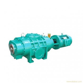 ZJ Roots vacuum pump