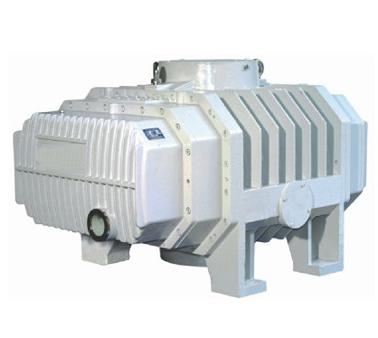 ZJQL罗茨真空泵 (2)