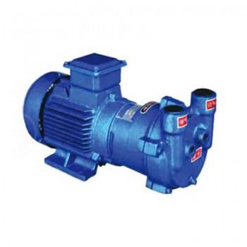 2BV系列水環式真空泵
