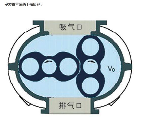 罗茨真空泵的工作原理图