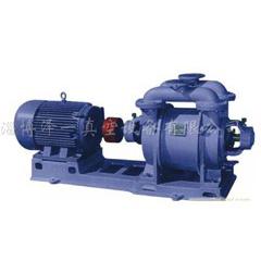 SK係列水環式真空泵