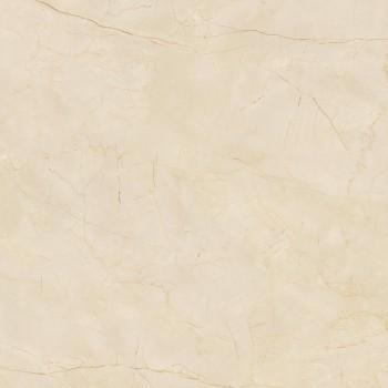 1SR802067F  金丝米黄