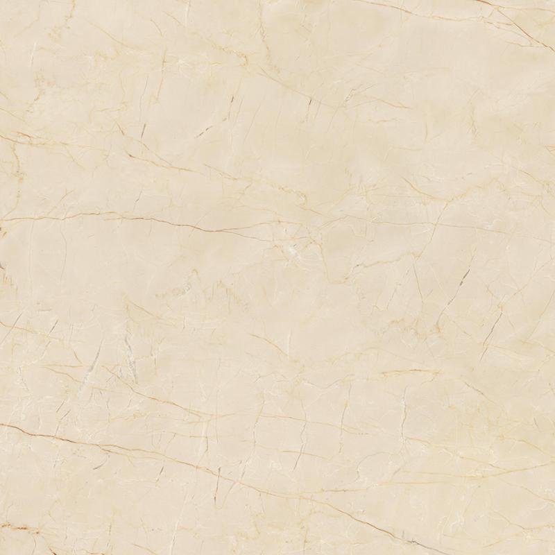 1SR802067F  金絲米黃