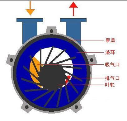 水环真空泵结构图