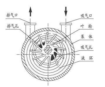 水环真空泵工作过程结构图