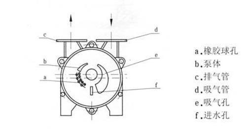水环真空泵及压缩机结构图