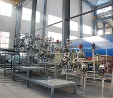 30L自動化高壓反應釜