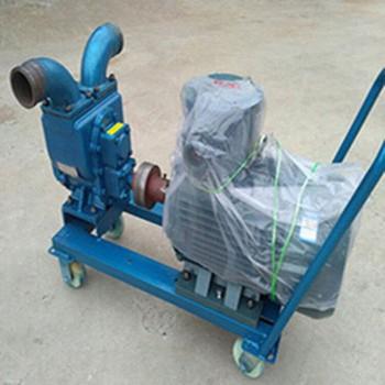 移動式防爆電動抽油泵