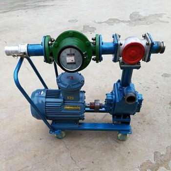 带流量表抽油泵