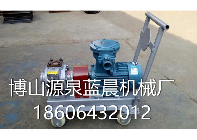 微型水油泵 (2)