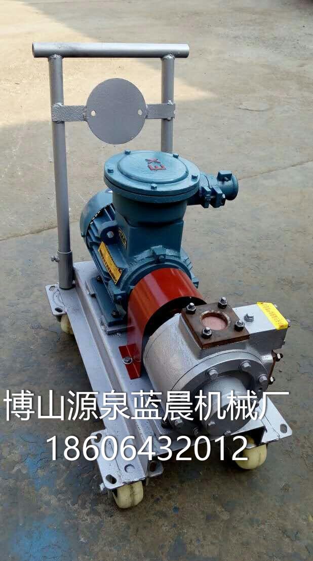 微型水油泵 (1)