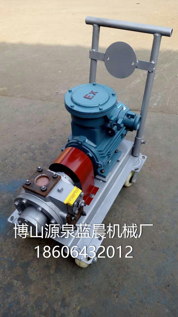 微型水油泵 (3)