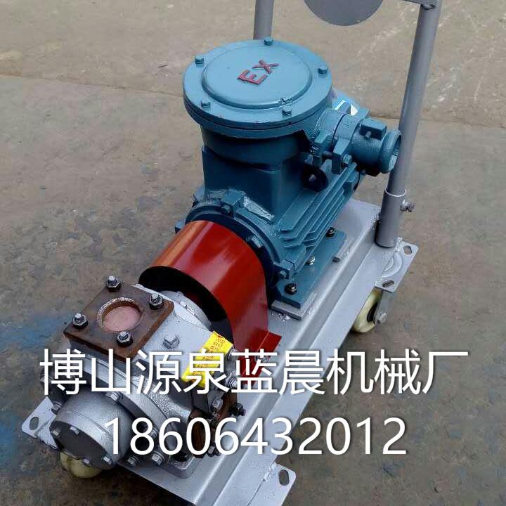 微型水油泵