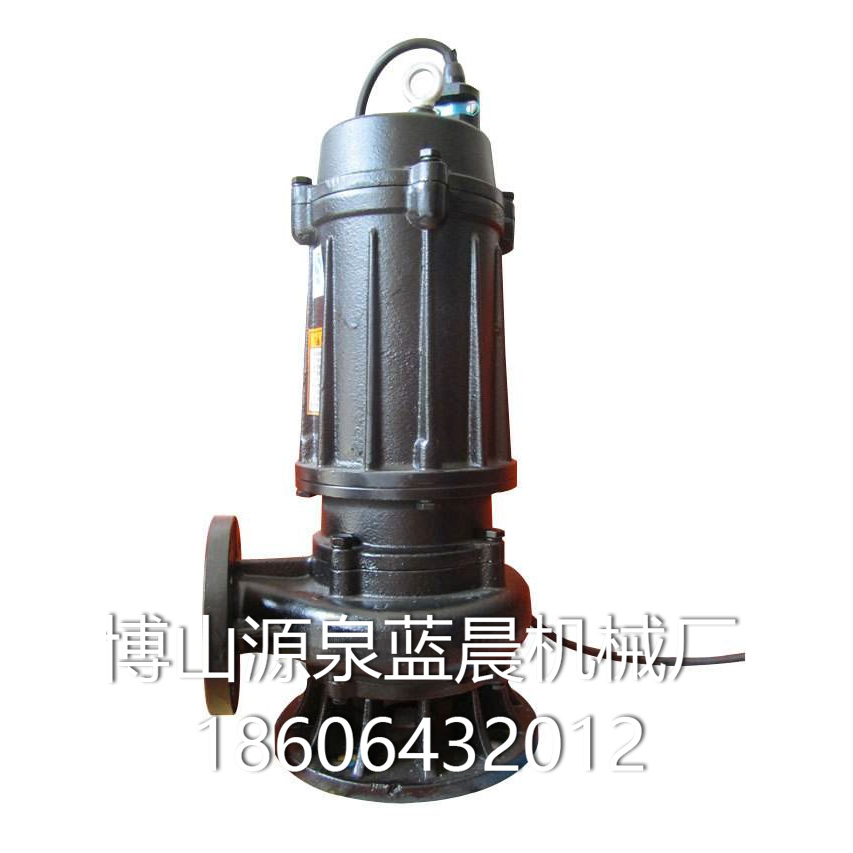 排污泵 (1)