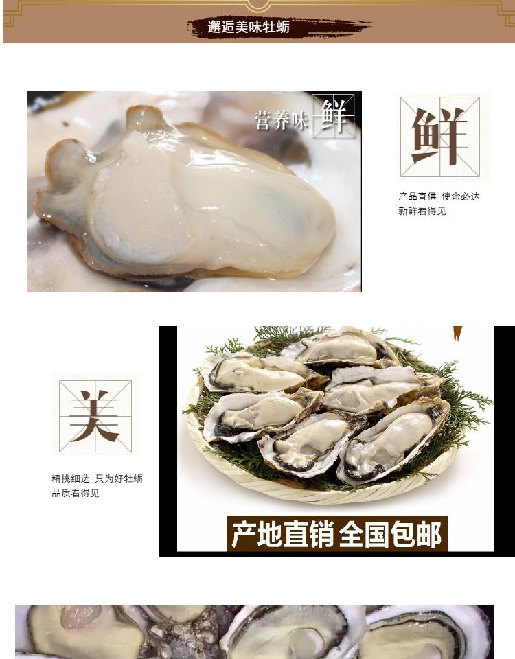邂逅美味牡蛎