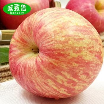 红富士苹果85mm大果
