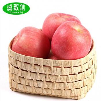 红富士苹果85mm