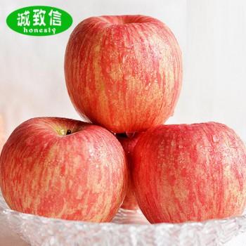 红富士苹果75mm