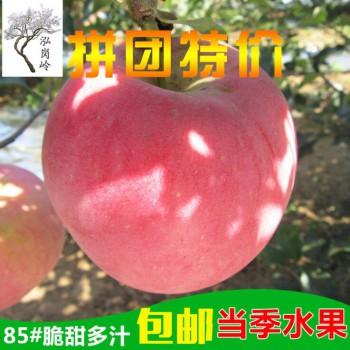 红富士苹果85大果