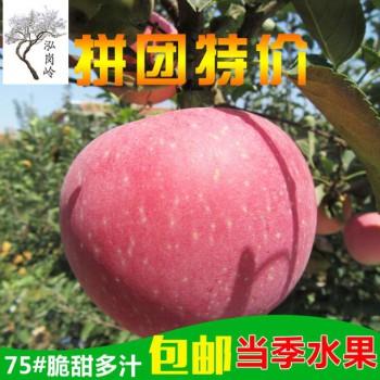 红富士苹果75果