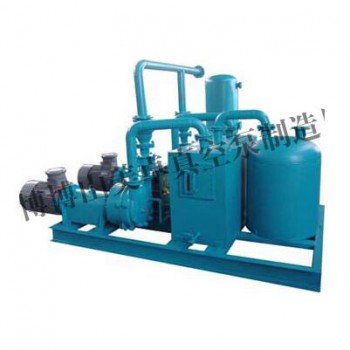 2BW液环真空泵