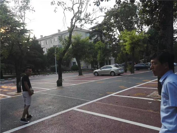 園林景觀道路設計施工 (2)