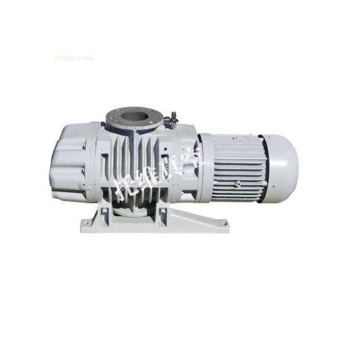 ZJB系列带溢流阀罗茨真空泵