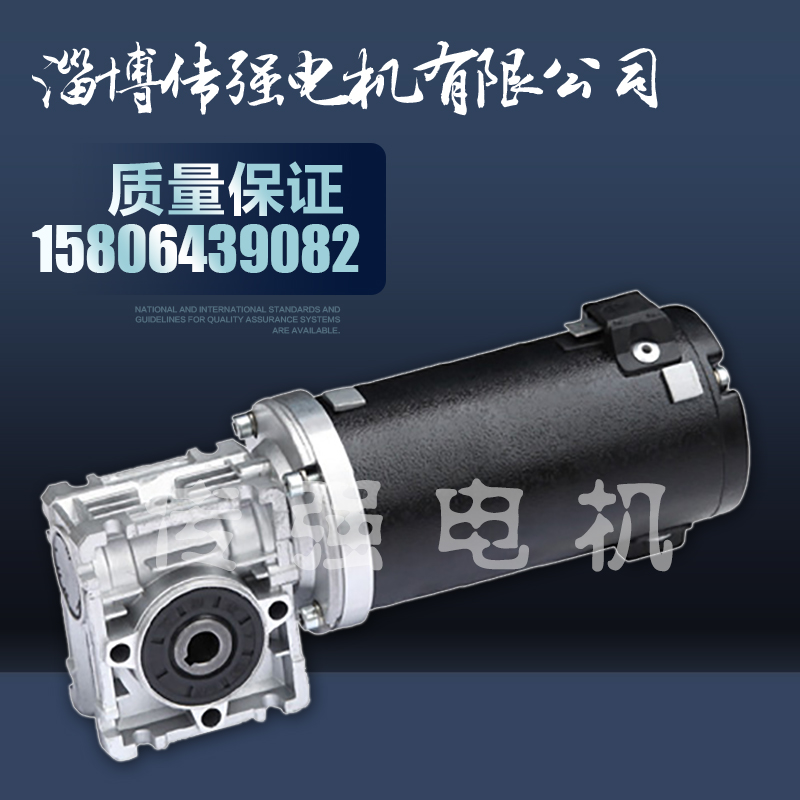 73ZYJ-RV030割草机电机