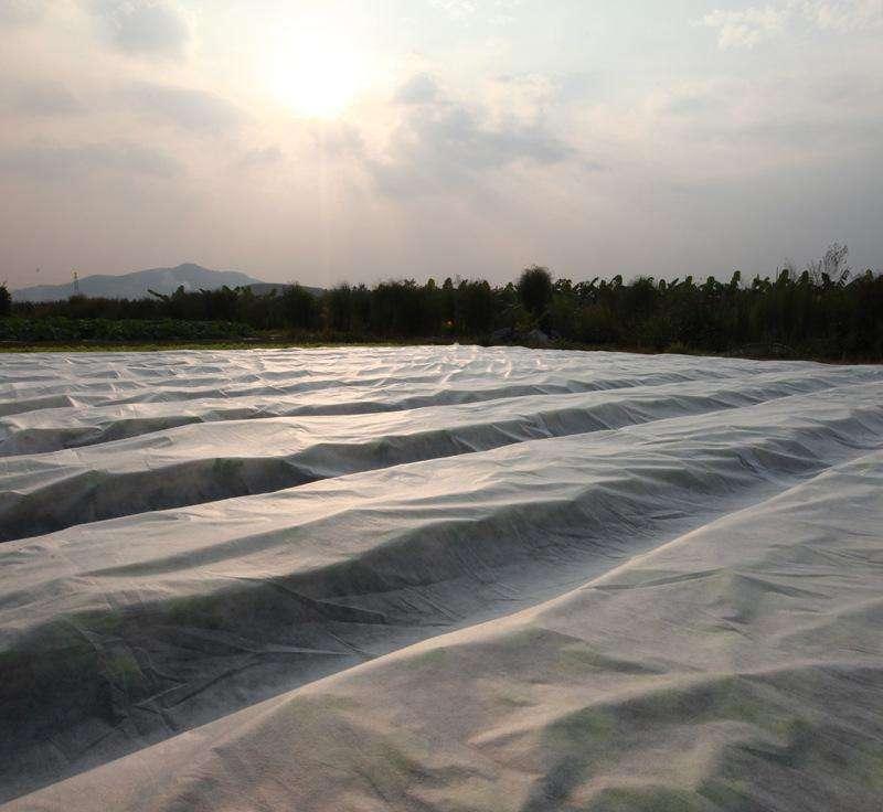 農用無紡布