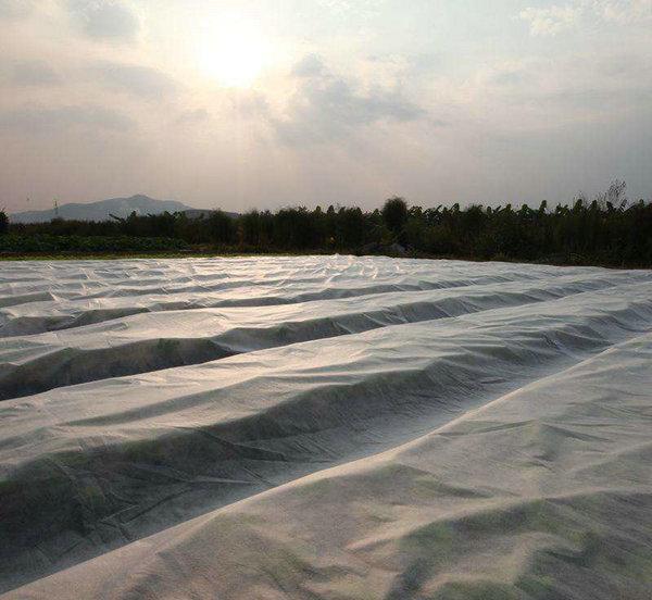 农用无纺布