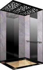 住宅(家庭)电梯