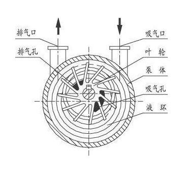 水环真空泵工作原理图